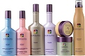 Pureology hair care products at Styles of Elegance salon in Tallahassee